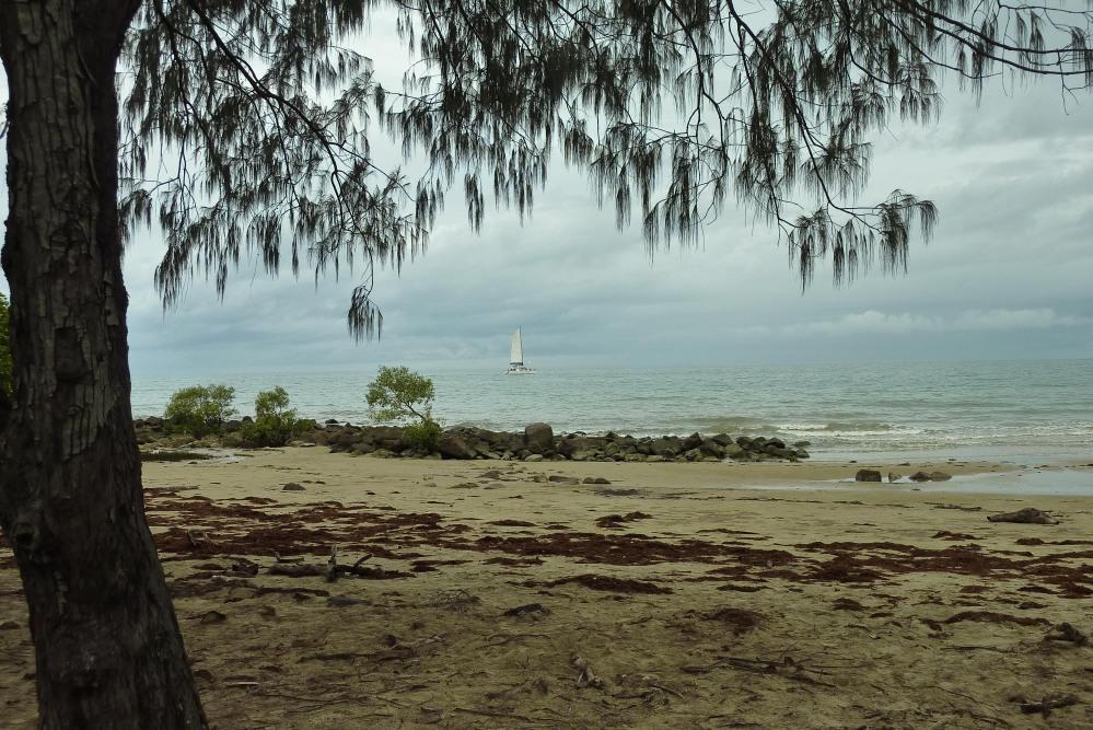 Tropical Queensland (3/6)